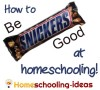 How to be Snickers Good at Homeschooling